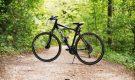 Почему велосипед поможет в борьбе с коронавирусом?